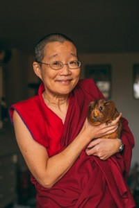 Buddhism in a Nutshell